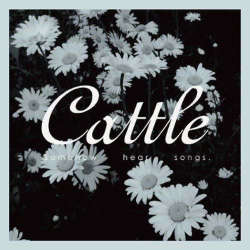 Cattle - Somehow Hear Songs